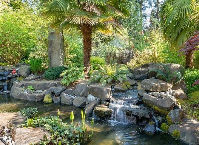 美国最著名的悬疑小说作家Jance改造的花园房产-2