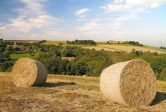 美国农场图片-2